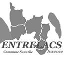 Logo Entrelacs gris